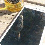 ingress-und-bier
